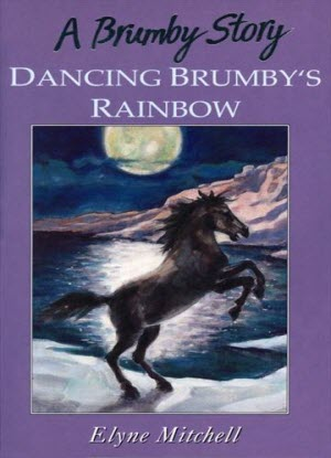 A Brumby Story:  Dancing Brumby's Rainbow