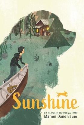 sunshine-9781536214116